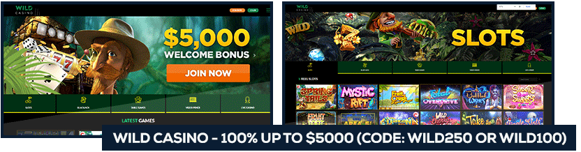 screenshot-usa-casinos-wild-casino