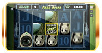 untamed: giant panda from microgaming