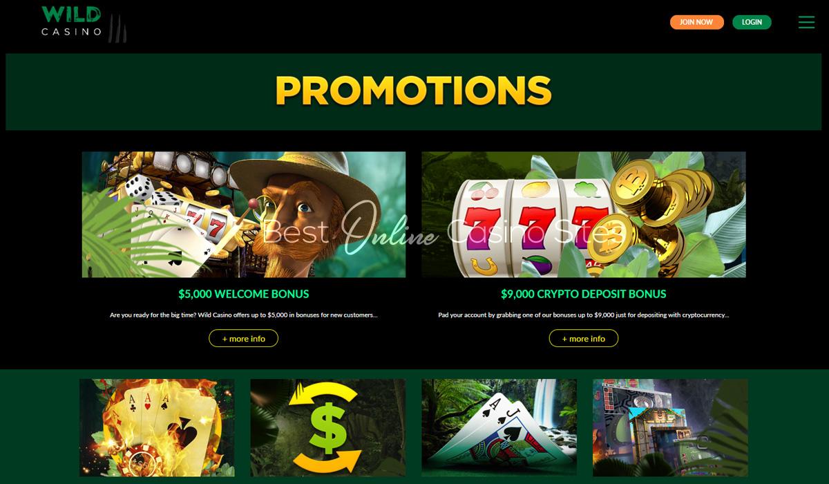 Go Wild Casino Desktop Site
