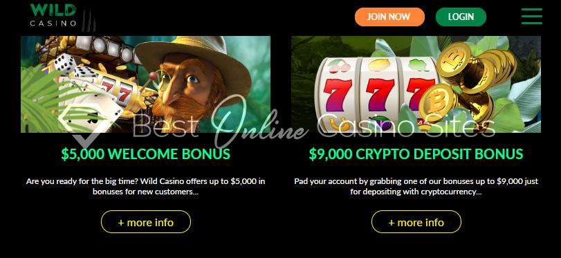 Go Wild Casino Dealers