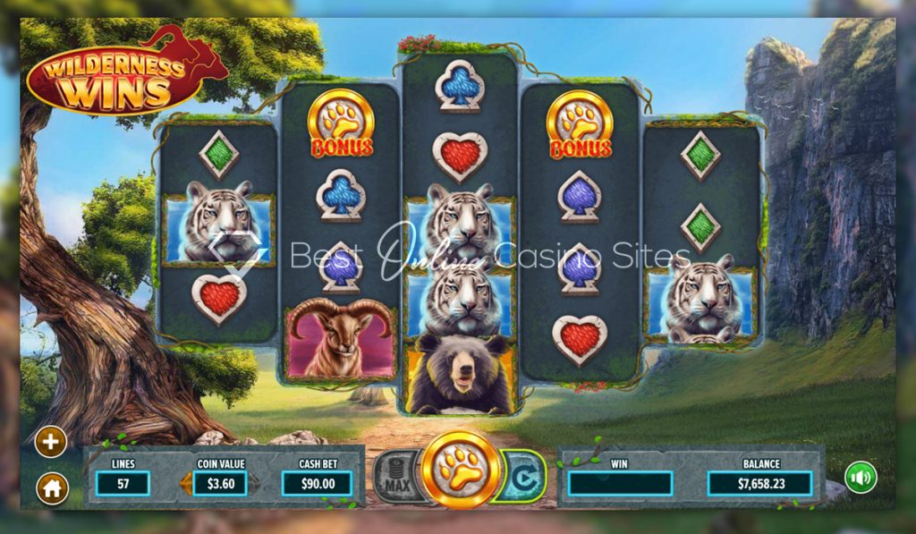 screenshot from dragongaming's wilderness wins slot game