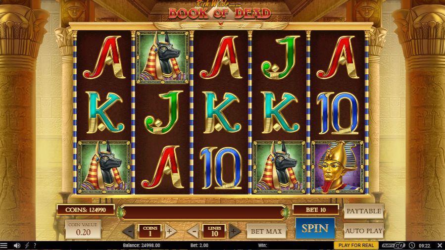 lucky-niki-book-of-dead-slot-game
