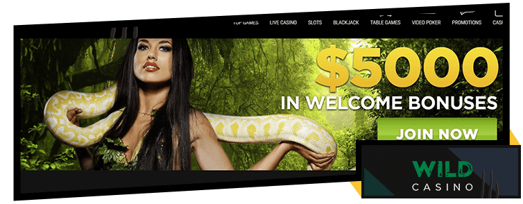 Wild Casino Welcome Bonus